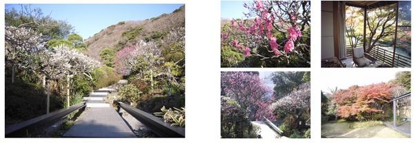 hoshun_garden.jpg