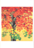 postcard_044.jpg